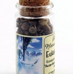 Eukalyptus Im 30ml Korkgläschen